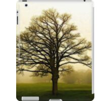 Dreamy autumn landscape iPad Case/Skin