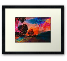 Colour Trees Framed Print