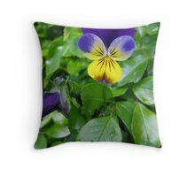 A Violet for You Throw Pillow