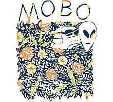 Modern Baseball Dog logo Photographic Print