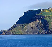 Ravenscar Cliffs by Mark Dobson