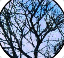 Blue Triple Goddess Symbol Sticker