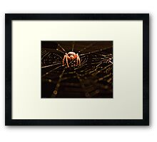 Come Into My Lair. Framed Print
