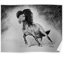 """A Free & Untamed Spirit"" - Charcoal portrait Poster"