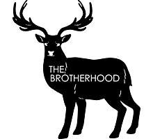 The Brotherhood Photographic Print