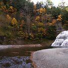 Treman Falls by AlGrover