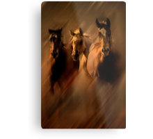 Running colts Metal Print