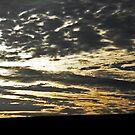 Sky Palette by sarnia2