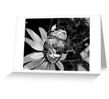 Black & White Pearl Greeting Card