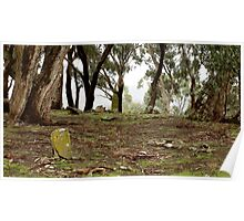 Pennyweight flat childrens cemetery, Castlemaine Poster