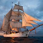 New Zealand tall ship cruise  by geofflackner