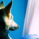 Waitin' For Dad To Come Home by Carrie Bonham