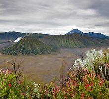 Sunrise of Mount Bromo by DJBPhoto