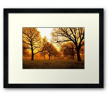 """Misty Royal Park"" Framed Print"