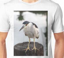Black-crowned night heron Unisex T-Shirt