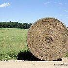 Hay Bale on the Country Road by Barberelli