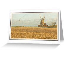 Reeds and Windmill, Norfolk Greeting Card