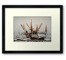 After the Wildfire Framed Print