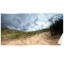 Dutch dunes. Poster