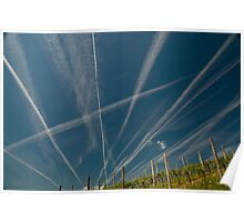 Vapour Trails in vineyard Poster