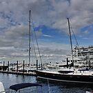 New Bedford Harbour : Massachusetts. USA by AnnDixon