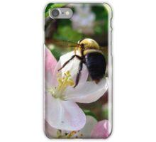 bee-utiful spring iPhone Case/Skin
