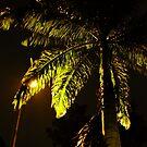A Tree by the Light by Azmi Zakariah