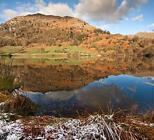 Rydal water on a frosty winters day by Shaun Whiteman