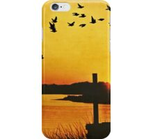 On the Lonely Shore iPhone Case/Skin