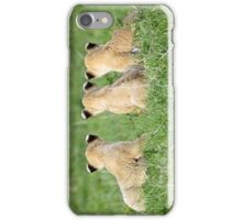 The Three Musketeers iPhone Case/Skin