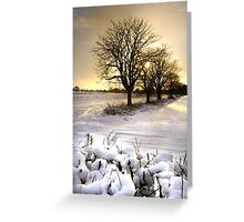 The sun setting on a winter's day Greeting Card