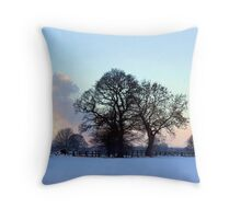 January brings the snow... Throw Pillow