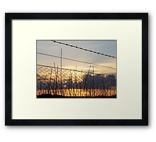 Sunset through fenceline Framed Print