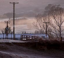 Early Morning Frost by Barbara Caffell
