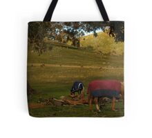 A Late Afternoon Rural Scape Tote Bag