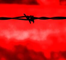 Barbed wire against a red background by steveball