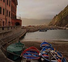 Vernazza harbor by annalisa bianchetti