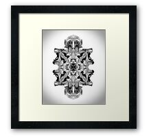 Animals in the mirror Framed Print