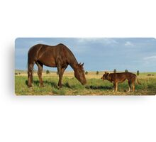 Stand-off Canvas Print
