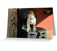 Jack le Chien Greeting Card