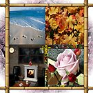 4 Seasons by judygal