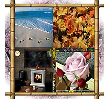 4 Seasons Photographic Print
