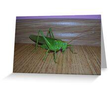 Skakavac (Orthoptera) Greeting Card