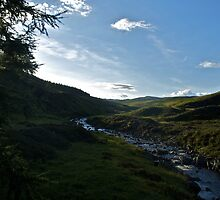 Blair Atholl Hillside by blueguitarman