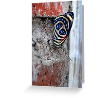 Spangled - Bolivia Greeting Card