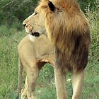 Lion King by Ludwig Wagner