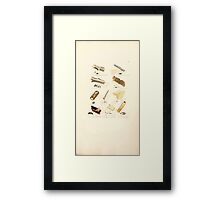 Coloured figures of English fungi or mushrooms James Sowerby 1809 1011 Framed Print