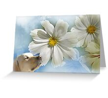 ~ Take Time to Smell the Flowers ~ Greeting Card