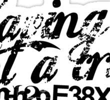 E38X - Having Fun Aint A Crime Sticker