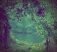 river veiw by James Rollins